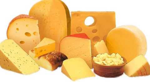 Cheese Portions
